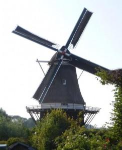 Marler molen (2)